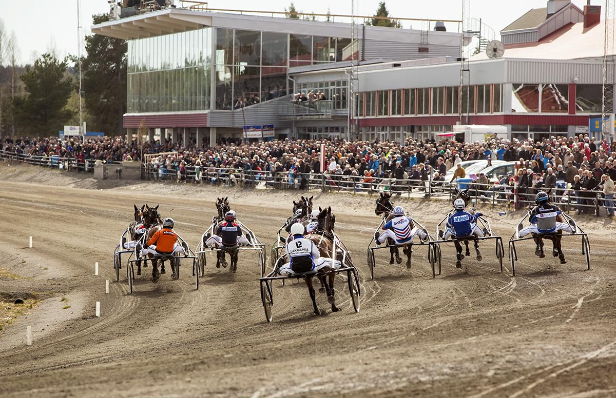 Travhästar och publik på Umåkers travbana
